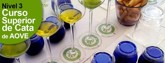 aula-de-cata-de-aceite-de-oliva-virgen-extra-superior