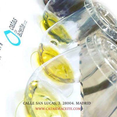 experiencia sensorial del aceite en madrid