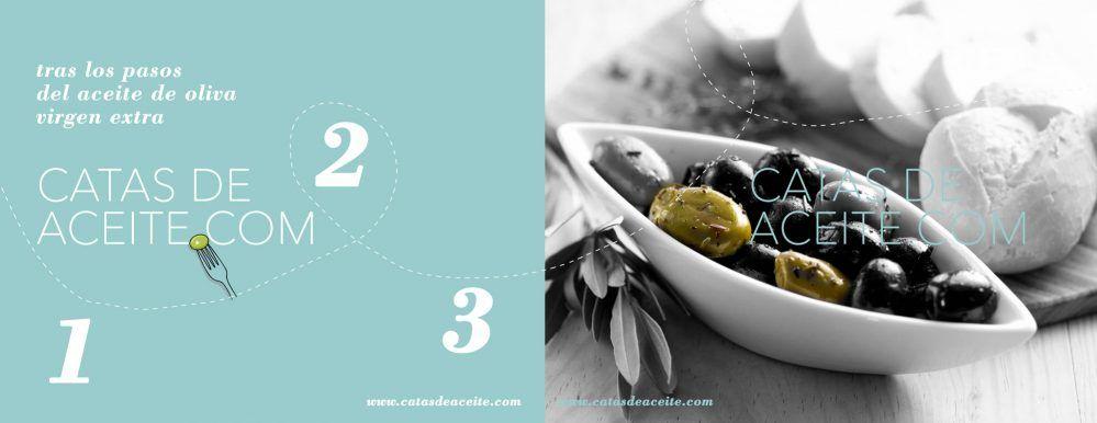 catas de aceite de oliva en Madrid